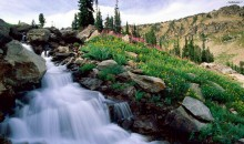 Get this this app & get access to tons of awesome waterfall HD wallpapers
