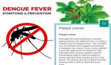 Get Our App For Dengue Fever, Symptoms & Prevention Guidelines